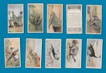 Collectable Tobacco cigarette cards Prehistoric Animals 1931 set